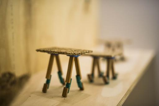 Lezing ontwerpers 11 september in Leens