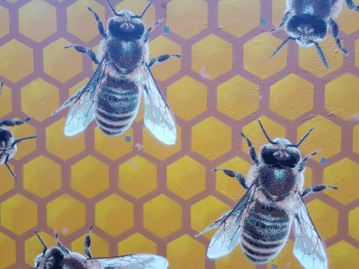 Opening BeeStreet in Leeuwarden