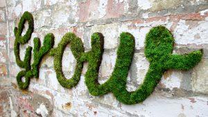 grow something green